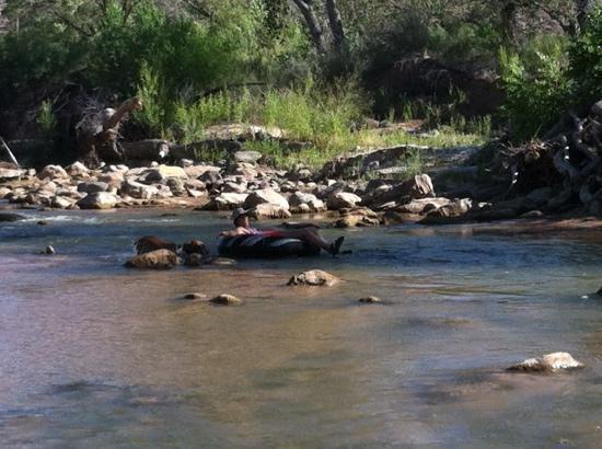 Zion River Resort: Virgin River
