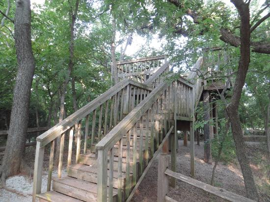 Martin Park Nature Center: Lookout near intersection of Trail