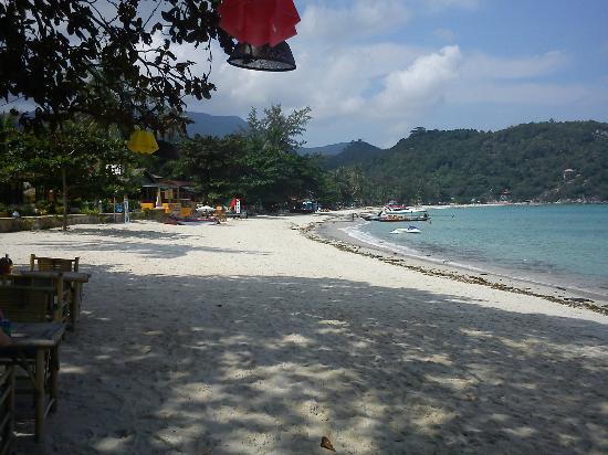 Nice Beach Resort: The beach