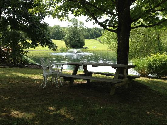 Unicorn Winery: one of the many picnic areas on the property