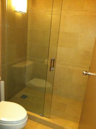The Hyatt Lodge at McDonald's Campus: Shower; No bath tub