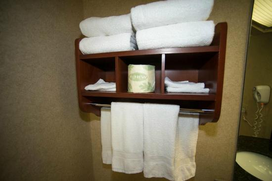 Hampton Inn Columbus/Delaware : Towels