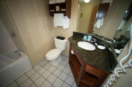 Hampton Inn Columbus/Delaware: Bathroom