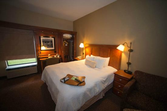 Hampton Inn Columbus/Delaware: King bed