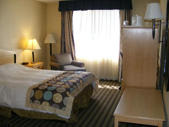Marina Village Inn: Bedroom and TV; you can't see stained bedding.