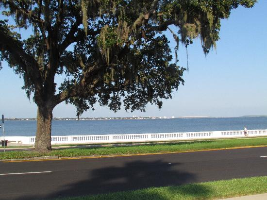 Bayshore Boulevard: Looking out across the bay