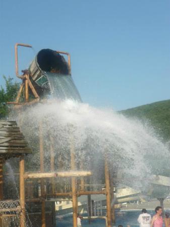 DelGrosso's Amusement Park: Bucket kids love this