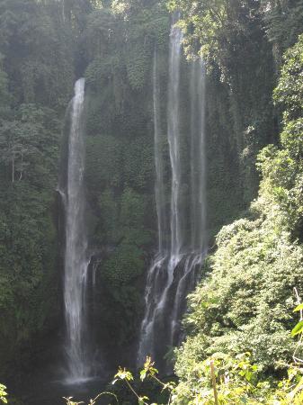 ซิงการาจา, อินโดนีเซีย: Air Terjun sekumpul