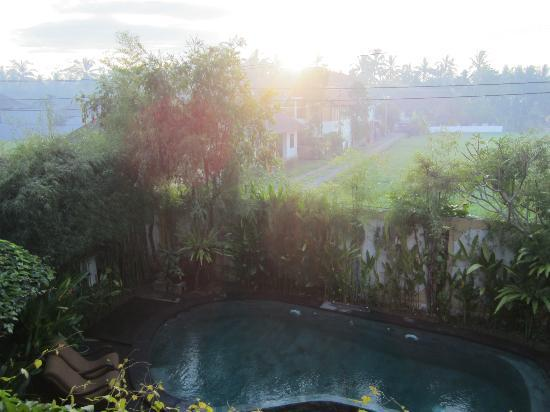 Junjungan Ubud Hotel and Spa: Balcony faces the west though. From the door its facing the east. Foot-like shaped pool.