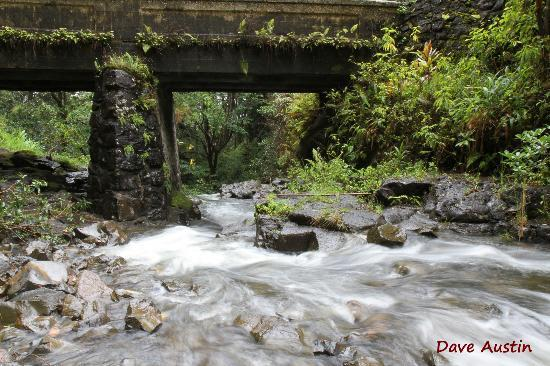 Used Slow Shutter Speed To Capture Movement Bridge Provided Frame