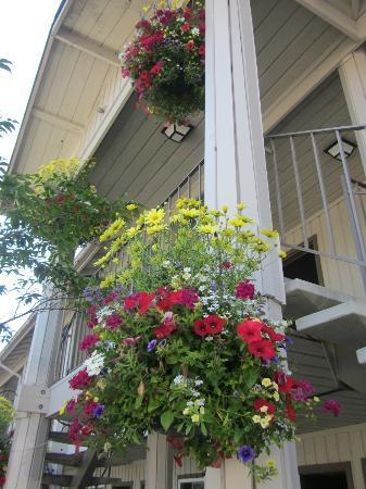 Earthbox Inn & Spa : flowers