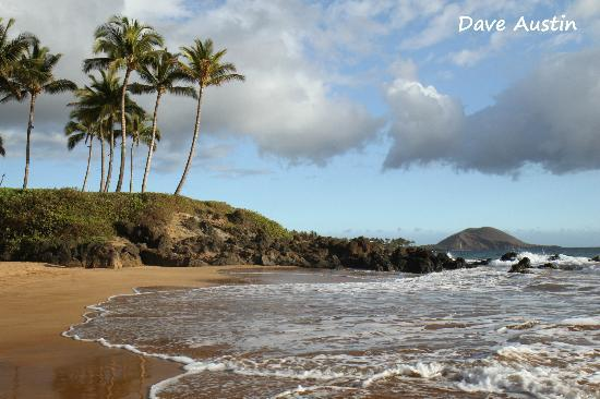 8d39e10177 Maui Photography  Use of S-curves - shore line curves draw you into the