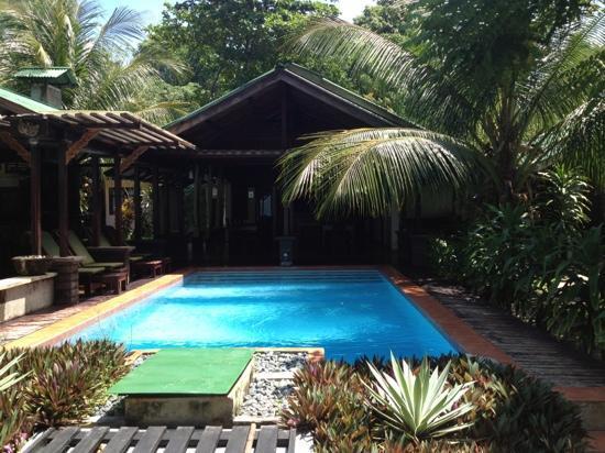 Murex Dive Resort: Poolområde