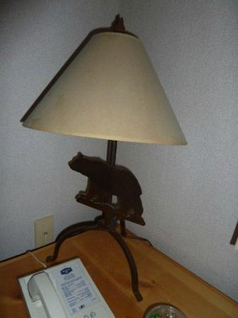 Hampton Inn Kalispell: lampshade