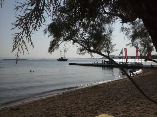 Holidays In Evia & Eretria Village Hotels: one of the beaches