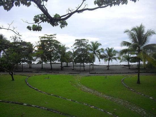 Iguana Lodge: Vista enfrente del hotel