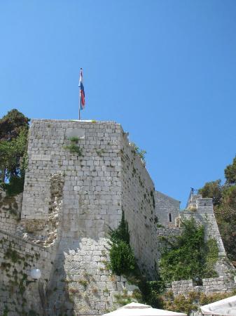 Zidine Fortress