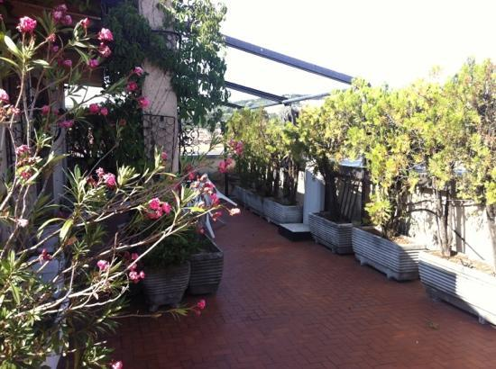 The Terrace of Bologna - Prices & B&B Reviews (Italy) - TripAdvisor