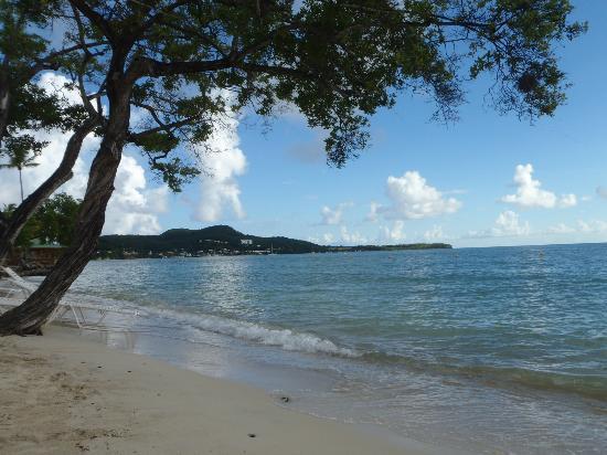 Paradisiaque !! - Picture of Club Med Buccaneer's Creek ...