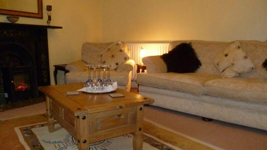 Plas Mawr Bed & Breakfast: Guest Lounge with TV & Free Internet