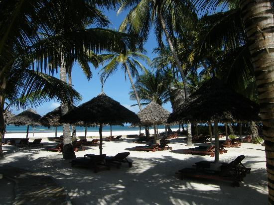 Pinewood Beach Resort & Spa: Shady area