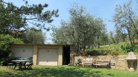 A Casa di Olivo: The work shed on the farm with beautiful flowers