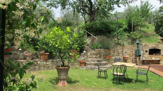 A Casa di Olivo: The garden beside the house