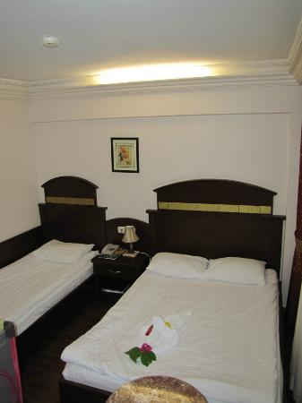 Botanik Hotel & Resort: Standard room