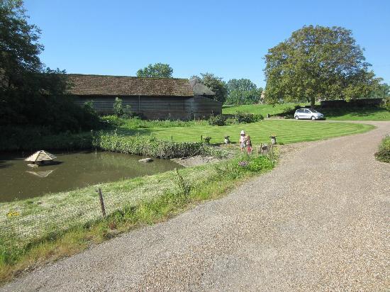 Brenley Farm: front garden