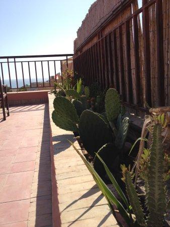 Riad Imourane : rooftop