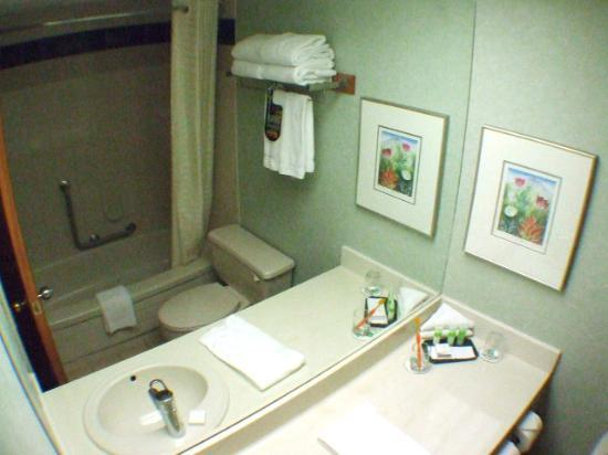 Banff Park Lodge Resort and Conference Centre: 2. Bathroom