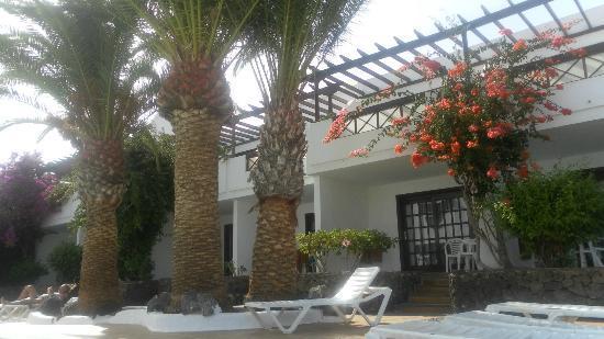 Apartamentos Los Tulipanes: Apartments