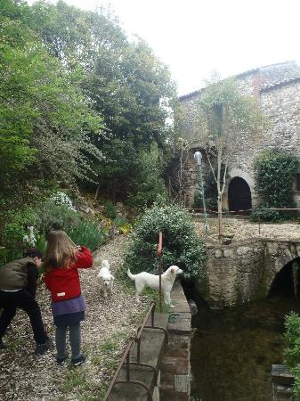 Molino di Molanoce: The mill