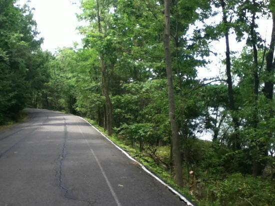 Scranton Lake Walking Path: Scranton Lake walk path