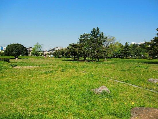 Remains of Totomi Kokubunji Temple: 何も無いです
