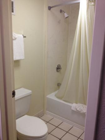 Super 8 Knoxville/West: Bathroom