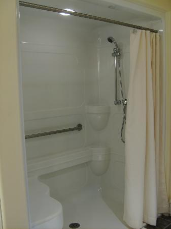 Rum Hollow Seaside Bed and Breakfast: Fully accessible shower with seat