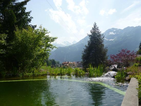 Beausite Park Hotel : Eco pool