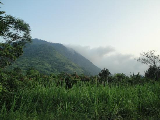 Manglares Churute Mangrove Tours: Landscape of Churute