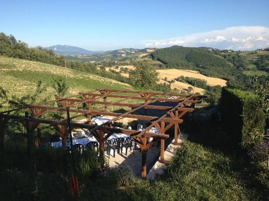 Villa Pian Di Cascina: View from our anniversary dinner terrace