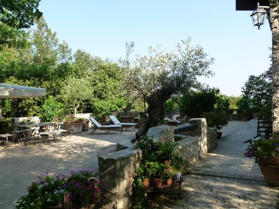 Agriturismo Eremo delle Fate: La terrazza