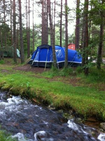 Rothiemurchus Camp and Caravan: Our tent at Rothiemurchus campsite