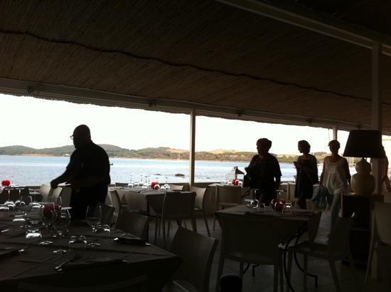 La terrazza sul mare foto di canessa baratti tripadvisor - Terrazzi sul mare ...