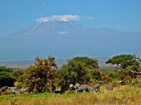 Tawi Lodge: Kilimanjaro views from the room