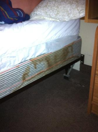 Swift Current Thriftlodge: Stained mattress