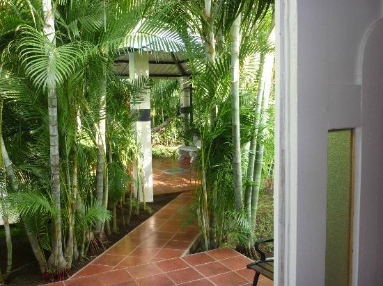 Viva Nicaragua Guest House: La chambre N°1 donne accès directe à la piscine