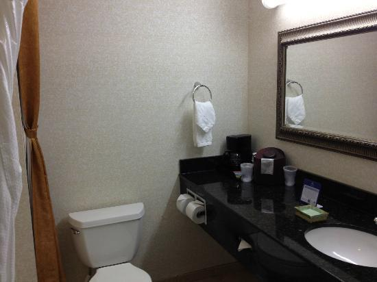 BEST WESTERN PLUS Hotel at the Convention Center: Bathroom