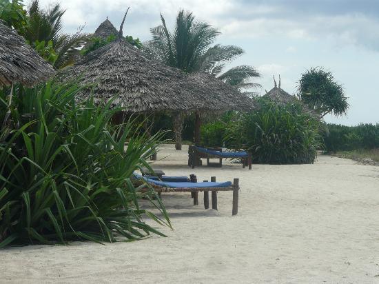 The Zanzibari: Part of the extensive grounds
