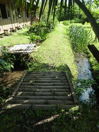 I giardini stile balinese foto di gardenia country inn - Giardini country ...