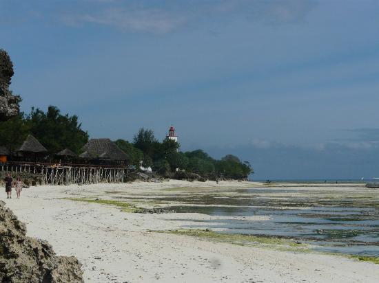 The Zanzibari: View along the beach at low tide